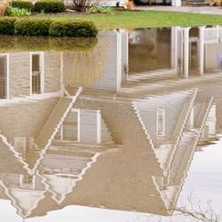 Tips-on-How-to-Repair-Prevent-Flooded-Lawns-3