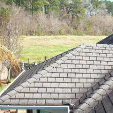 roofing shingle